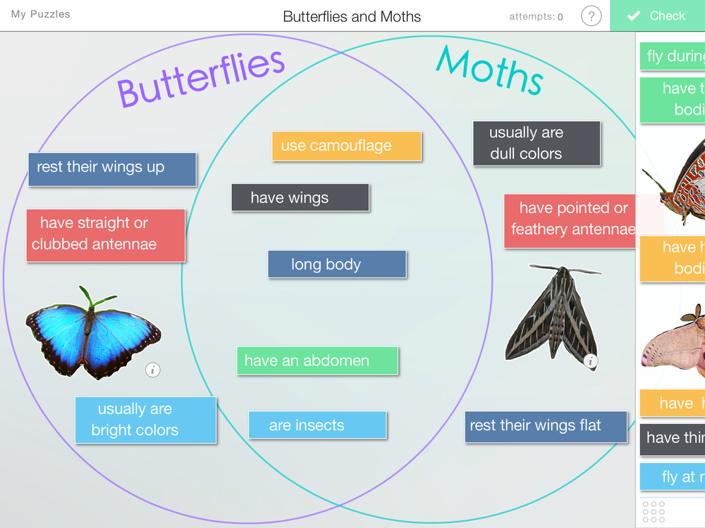 comparing butterflies and moths  u2014 learning in hand with