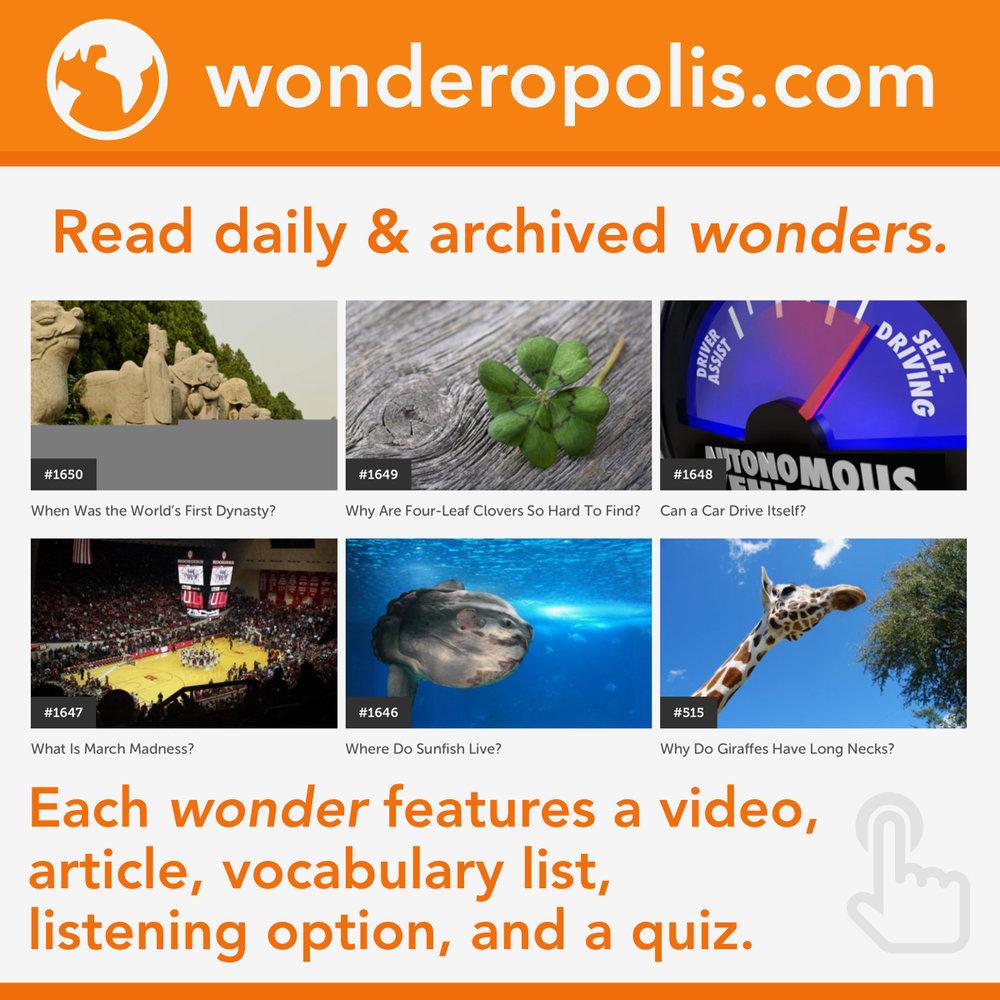 Wonder IG.001.jpeg