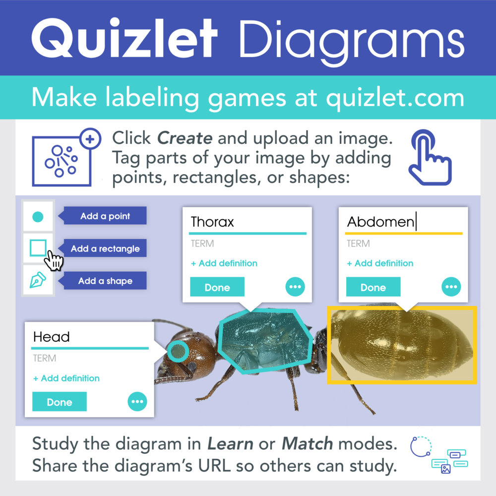 Make labeling games at quizlet.com. Click create and upload an image. Tag parts of your image by adding points, rectangles, or shapes. Study the diagram in Learn or Match modes.