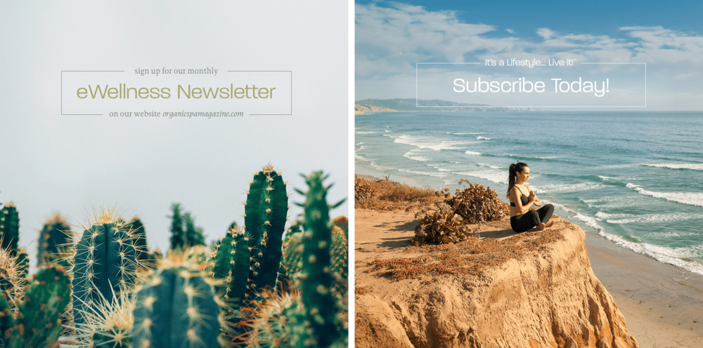 INSTAGRAM IMAGES TO PROMOTE NEWSLETTER SIGNUPS AND MAGAZINE SUBSCRIPTIONS