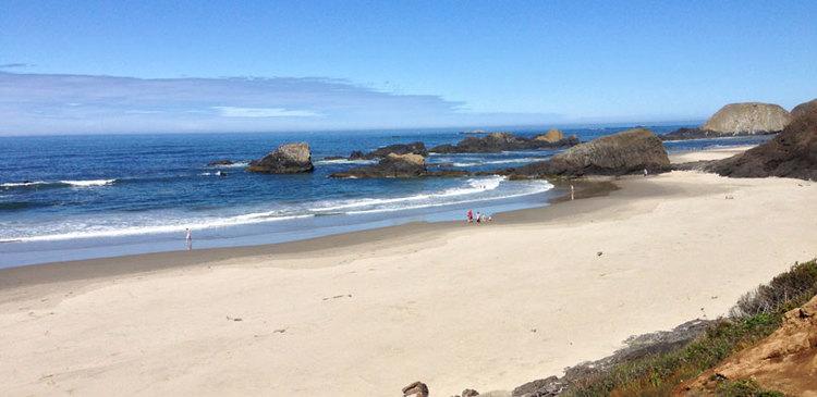 Oregon Coast with Kimba