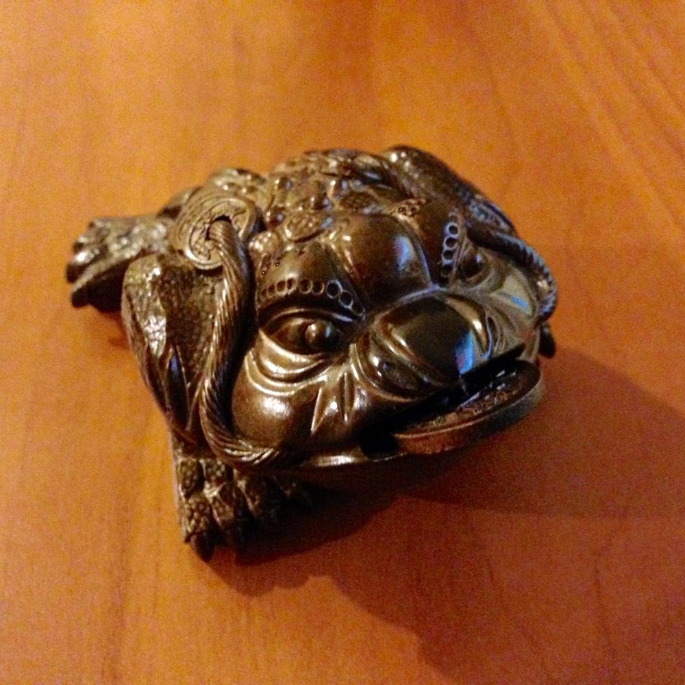 Chinese Abundance Frog
