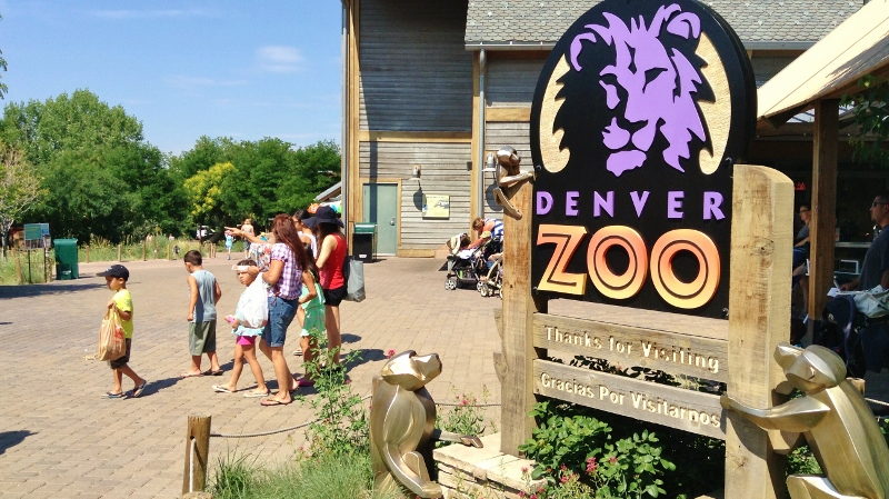 the denver zoo fun and adventure for all re max alliance colorado moves colorado real. Black Bedroom Furniture Sets. Home Design Ideas