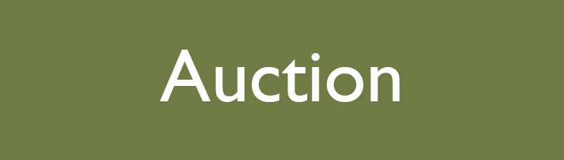 auction.png