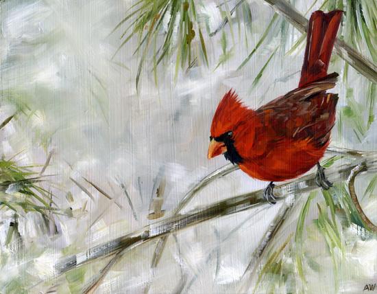 cardinal-in-pine-2013.jpg