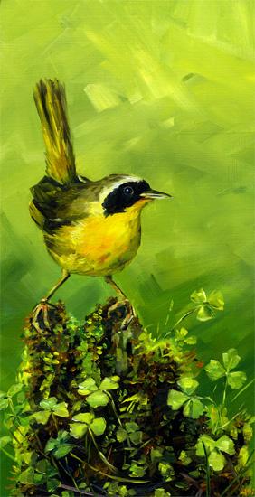 common-yellowthroat-clover.jpg