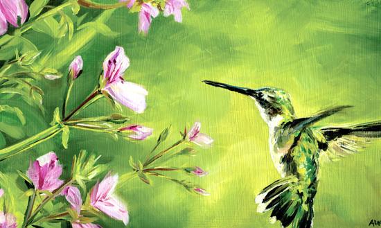 hummingbird-2013.jpg