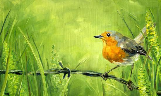robin-in-garden-NEW.jpg