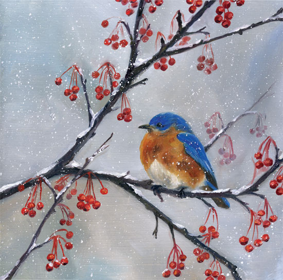 bluebird-in-berries.jpg