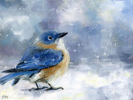 bluebird-violet-snow-2011.jpg