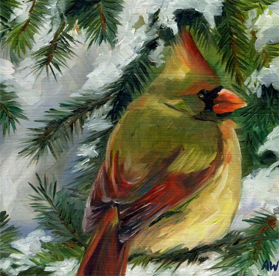 cardinal-in-pine-09.jpg