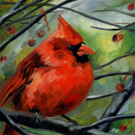 cardinal-09.jpg