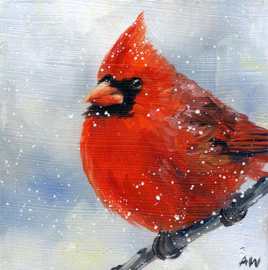 cardinal-snow-2010.jpg