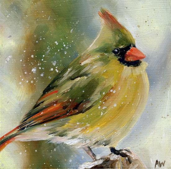 cardinal08.jpg
