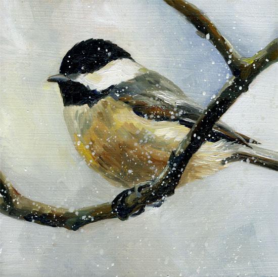 chickadee-on-lone-branch-09.jpg