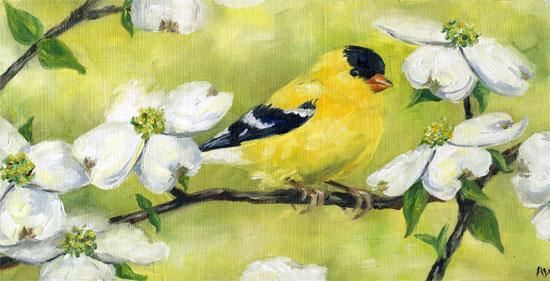 goldfinch-in-dogwood.jpg