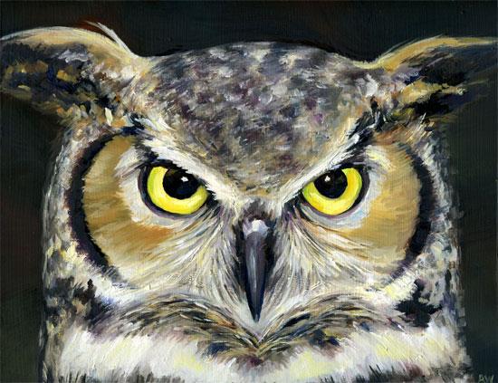 owl-350.jpg