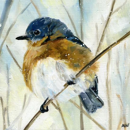 snowy-bluebird-2010.jpg