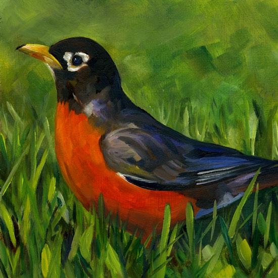 spring-robin.jpg