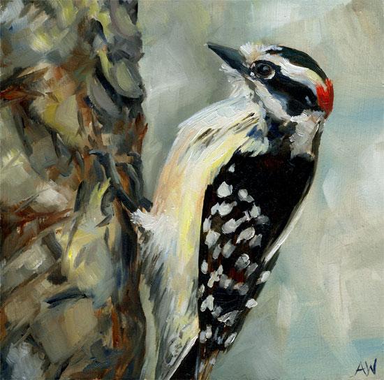 woodpecker-09.jpg