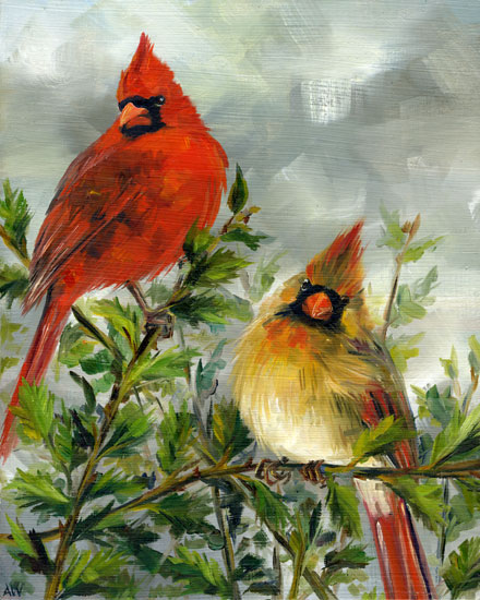 cardinals-on-holly.jpg