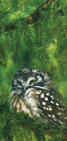 owl-in-pine.jpg