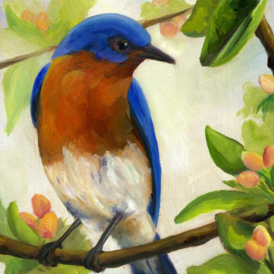 spring-bluebird.jpg