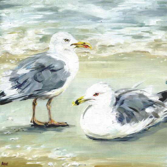 2-seagulls.jpg