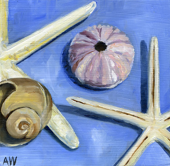 shells-on-periwinkle.jpg