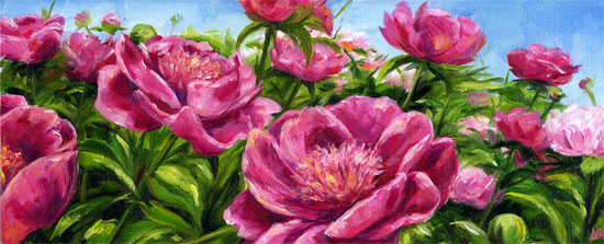 sea-of-peonies.jpg