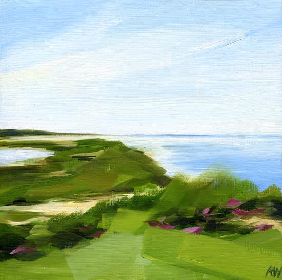 vineyard-dunes.jpg