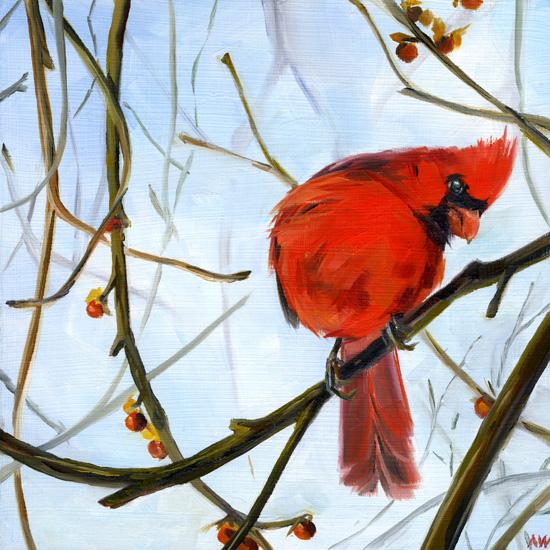 cardinal-yoga.jpg