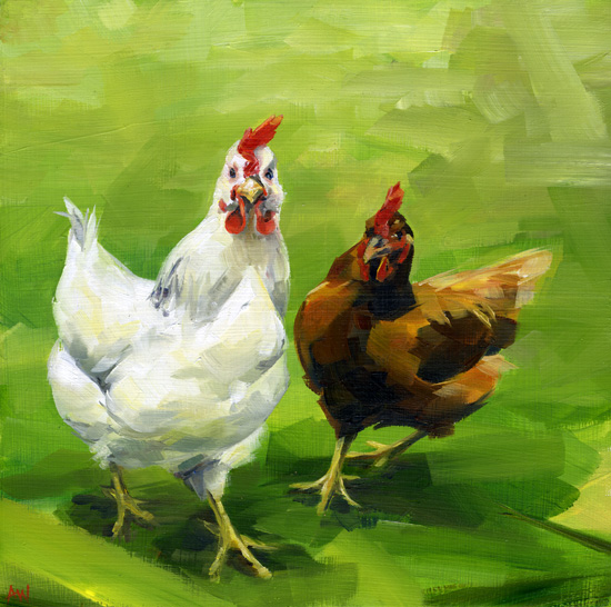 brown-and-white-hens.jpg