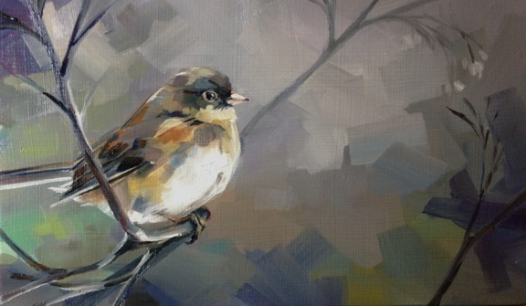 Junco (unfinished)