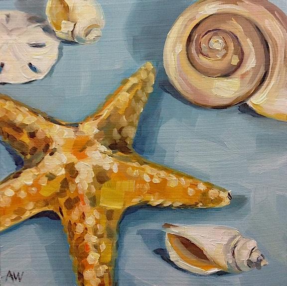 Shells on sky blue