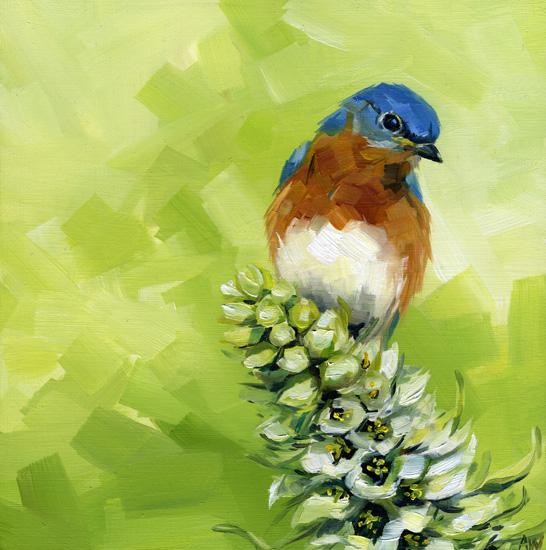 bluebird-on-flower.jpg