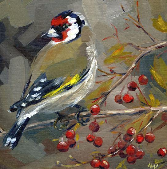 european-goldfinch.jpg
