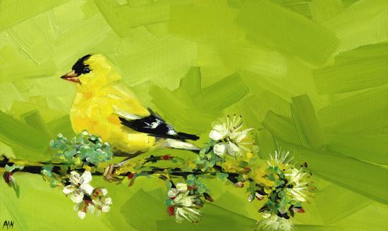 goldfinch-on-spring-branch.jpg
