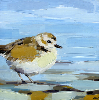 plover-in-blues.jpg