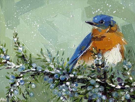 bluebird-juniper.jpg