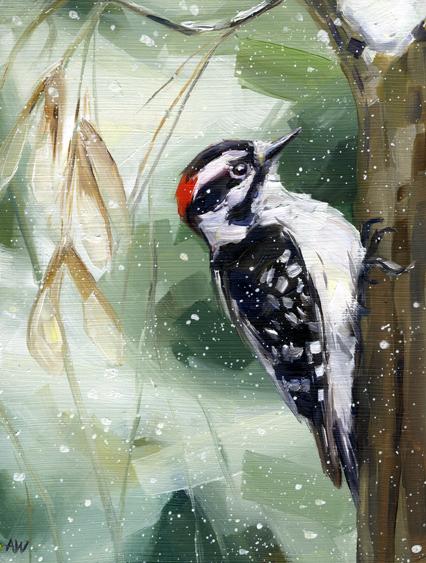 woodpecker-in-green.jpg