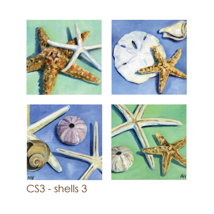 shells3.jpg