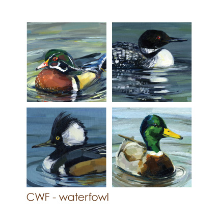 waterfowl.jpg