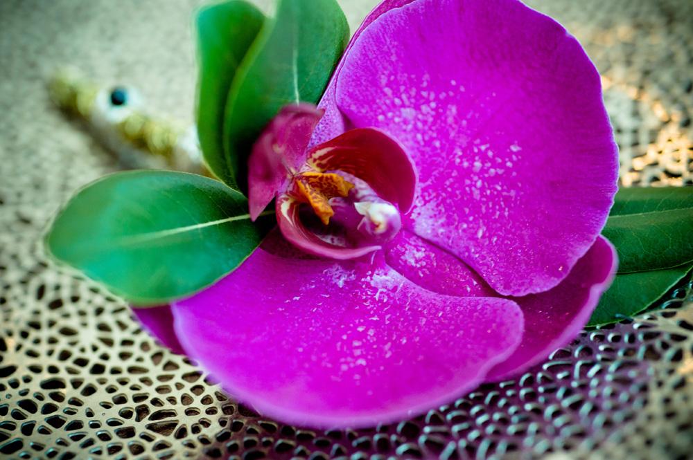 New Flower.jpg