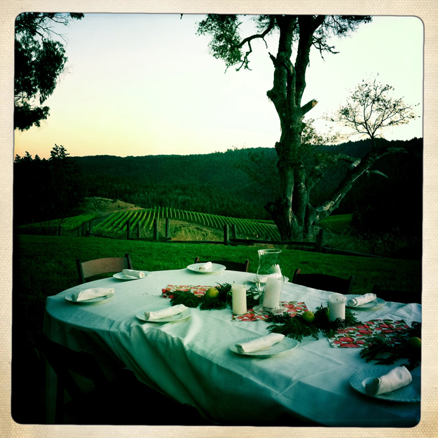 Wine Country Wedding ©Lisa Berman