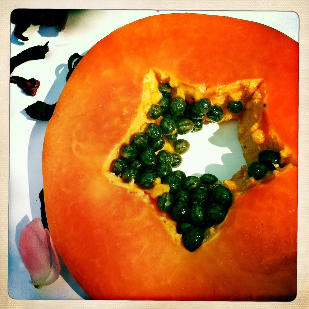 Papaya Star ©Lisa Berman