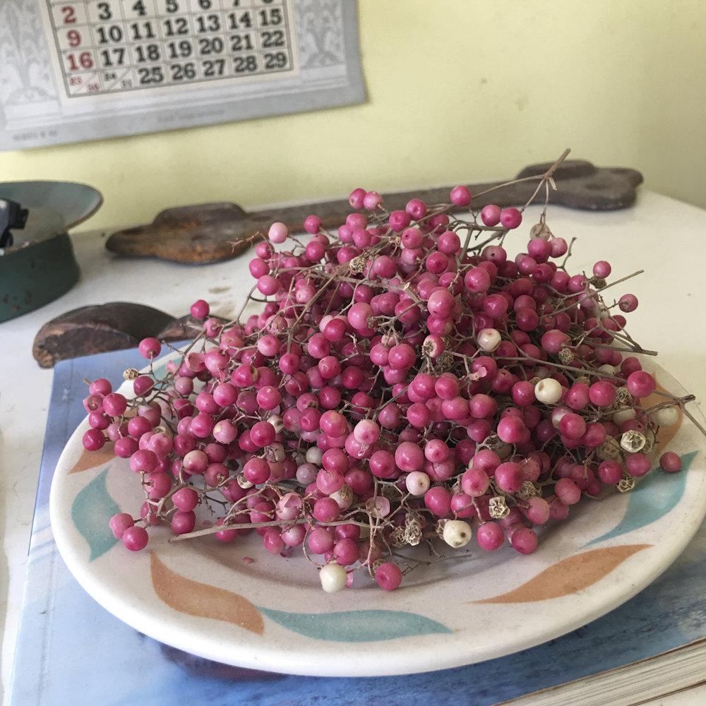 Copy of Port Costa pink berries ©2017 Lisa Berman