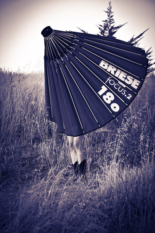 Sonoma_light3.jpg