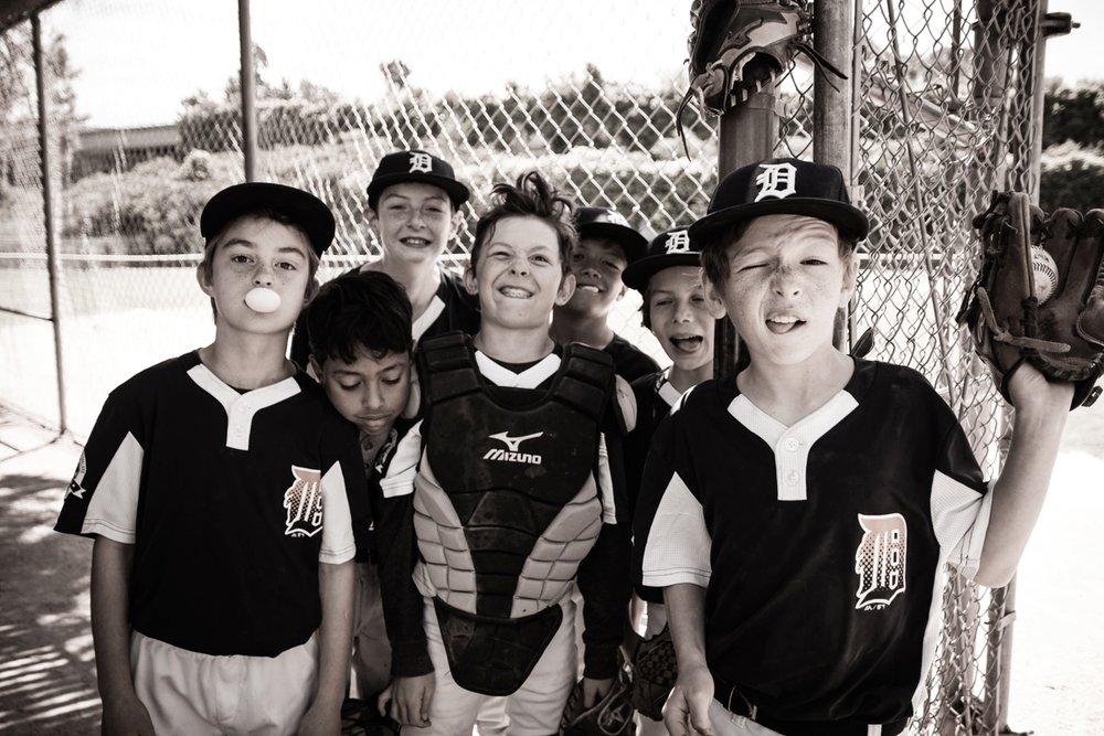 Copy of Baseball Tigers ©2018 Lisa Berman