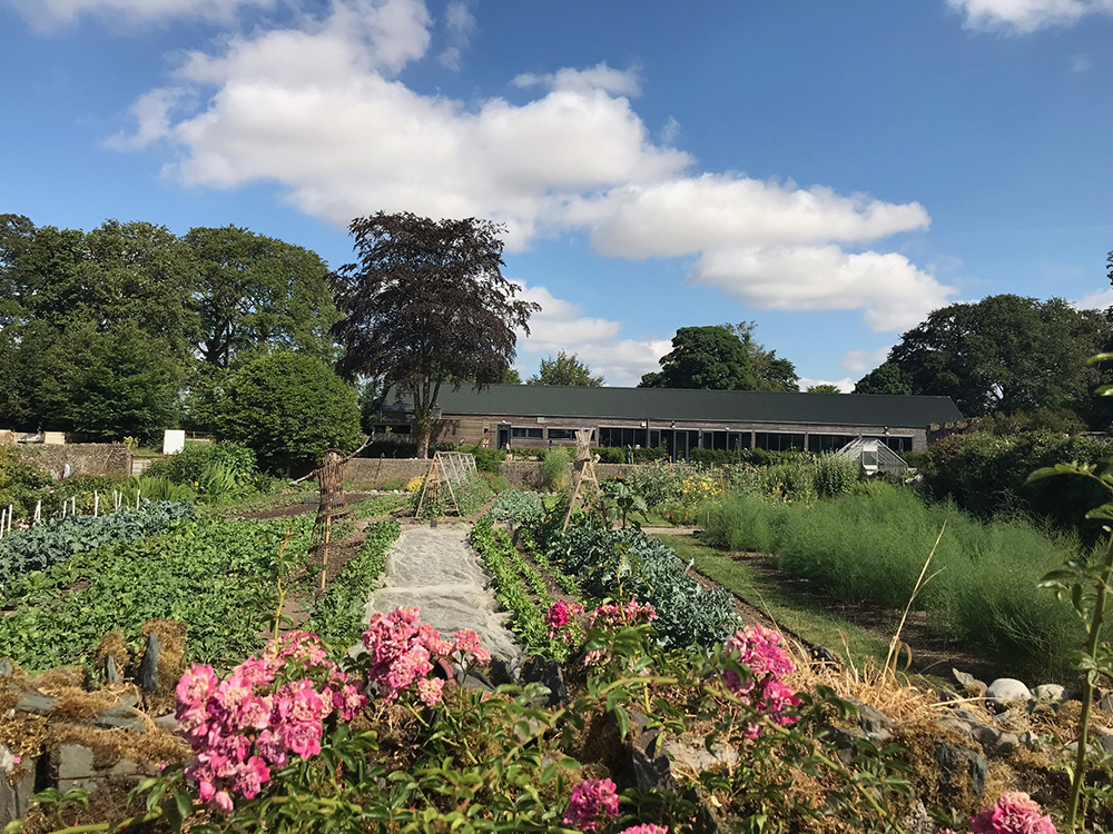 burtownhouseretreat_vegetablegardens.jpg